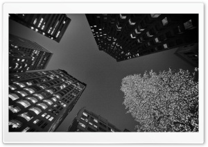 Black And White San Francisco Christmas HD Wide Wallpaper for Widescreen