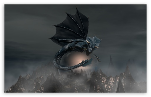 Black Dragon HD wallpaper for Wide 16:10 5:3 Widescreen WHXGA WQXGA WUXGA WXGA WGA ; HD 16:9 High Definition WQHD QWXGA 1080p 900p 720p QHD nHD ; Standard 4:3 5:4 3:2 Fullscreen UXGA XGA SVGA QSXGA SXGA DVGA HVGA HQVGA devices ( Apple PowerBook G4 iPhone 4 3G 3GS iPod Touch ) ; Tablet 1:1 ; iPad 1/2/Mini ; Mobile 4:3 5:3 3:2 16:9 5:4 - UXGA XGA SVGA WGA DVGA HVGA HQVGA devices ( Apple PowerBook G4 iPhone 4 3G 3GS iPod Touch ) WQHD QWXGA 1080p 900p 720p QHD nHD QSXGA SXGA ;