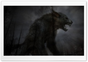 Black Fierce Wolf HD Wide Wallpaper for Widescreen