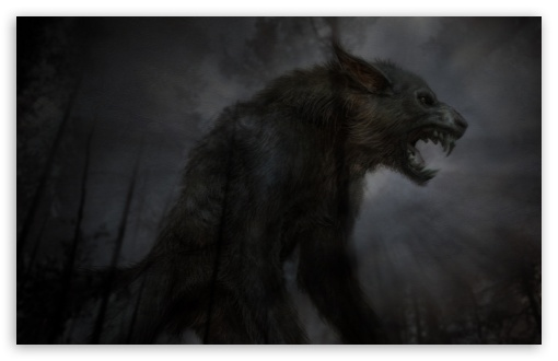 Black Fierce Wolf UltraHD Wallpaper for Wide 16:10 5:3 Widescreen WHXGA WQXGA WUXGA WXGA WGA ; 8K UHD TV 16:9 Ultra High Definition 2160p 1440p 1080p 900p 720p ; Standard 3:2 Fullscreen DVGA HVGA HQVGA ( Apple PowerBook G4 iPhone 4 3G 3GS iPod Touch ) ; Mobile 5:3 3:2 16:9 - WGA DVGA HVGA HQVGA ( Apple PowerBook G4 iPhone 4 3G 3GS iPod Touch ) 2160p 1440p 1080p 900p 720p ;