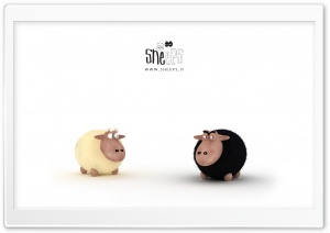 Black Sheep Vs White Sheep HD Wide Wallpaper for Widescreen