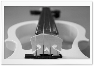 Black White Violin HD Wide Wallpaper for Widescreen