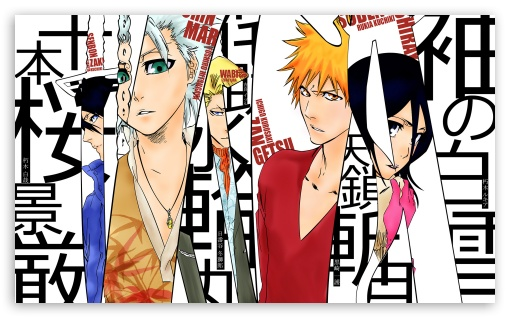 Bleach Characters HD wallpaper for Wide 5:3 Widescreen WGA ; HD 16:9 High Definition WQHD QWXGA 1080p 900p 720p QHD nHD ; Mobile 5:3 16:9 - WGA WQHD QWXGA 1080p 900p 720p QHD nHD ;