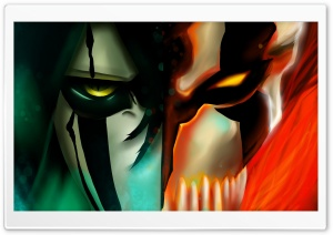 Bleach, Ulquiorra Cifer  Kurosaki Ichigo HD Wide Wallpaper for Widescreen