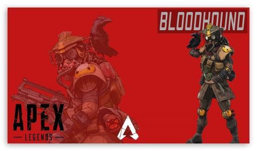 Bloodhound Ultra Hd Desktop Background Wallpaper For 4k Uhd Tv