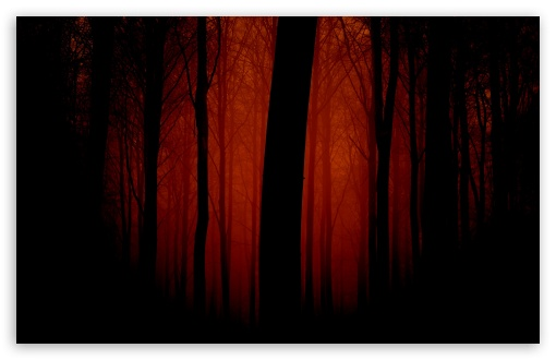 Bloody Forest HD wallpaper for Standard 4:3 5:4 Fullscreen UXGA XGA SVGA QSXGA SXGA ; Wide 16:10 5:3 Widescreen WHXGA WQXGA WUXGA WXGA WGA ; HD 16:9 High Definition WQHD QWXGA 1080p 900p 720p QHD nHD ; Other 3:2 DVGA HVGA HQVGA devices ( Apple PowerBook G4 iPhone 4 3G 3GS iPod Touch ) ; Mobile VGA WVGA iPhone iPad PSP Phone - VGA QVGA Smartphone ( PocketPC GPS iPod Zune BlackBerry HTC Samsung LG Nokia Eten Asus ) WVGA WQVGA Smartphone ( HTC Samsung Sony Ericsson LG Vertu MIO ) HVGA Smartphone ( Apple iPhone iPod BlackBerry HTC Samsung Nokia ) Sony PSP Zune HD Zen ; Tablet 2 Android ;