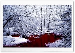 Bloody Winter HD Wide Wallpaper for 4K UHD Widescreen desktop & smartphone