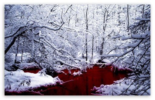 Bloody Winter HD wallpaper for Wide 16:10 5:3 Widescreen WHXGA WQXGA WUXGA WXGA WGA ; HD 16:9 High Definition WQHD QWXGA 1080p 900p 720p QHD nHD ; Standard 4:3 5:4 3:2 Fullscreen UXGA XGA SVGA QSXGA SXGA DVGA HVGA HQVGA devices ( Apple PowerBook G4 iPhone 4 3G 3GS iPod Touch ) ; Tablet 1:1 ; iPad 1/2/Mini ; Mobile 4:3 5:3 3:2 16:9 5:4 - UXGA XGA SVGA WGA DVGA HVGA HQVGA devices ( Apple PowerBook G4 iPhone 4 3G 3GS iPod Touch ) WQHD QWXGA 1080p 900p 720p QHD nHD QSXGA SXGA ;