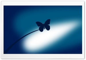 Blue Butterfly HD Wide Wallpaper for Widescreen
