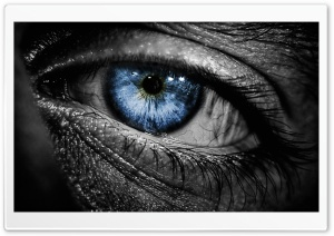 Blue Eye HD Wide Wallpaper for Widescreen