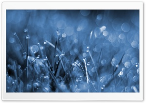 Blue Fog HD Wide Wallpaper for Widescreen