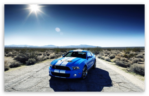 Blue Ford Shelby HD wallpaper for Wide 16:10 5:3 Widescreen WHXGA WQXGA WUXGA WXGA WGA ; HD 16:9 High Definition WQHD QWXGA 1080p 900p 720p QHD nHD ; Standard 4:3 5:4 3:2 Fullscreen UXGA XGA SVGA QSXGA SXGA DVGA HVGA HQVGA devices ( Apple PowerBook G4 iPhone 4 3G 3GS iPod Touch ) ; Tablet 1:1 ; iPad 1/2/Mini ; Mobile 4:3 5:3 3:2 16:9 5:4 - UXGA XGA SVGA WGA DVGA HVGA HQVGA devices ( Apple PowerBook G4 iPhone 4 3G 3GS iPod Touch ) WQHD QWXGA 1080p 900p 720p QHD nHD QSXGA SXGA ; Dual 16:10 5:3 16:9 4:3 5:4 WHXGA WQXGA WUXGA WXGA WGA WQHD QWXGA 1080p 900p 720p QHD nHD UXGA XGA SVGA QSXGA SXGA ;