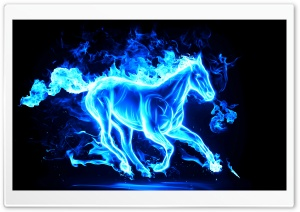 Blue Horse HD Wide Wallpaper for 4K UHD Widescreen desktop & smartphone