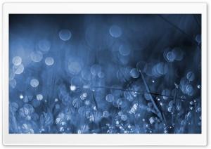 Blue Moon HD Wide Wallpaper for Widescreen