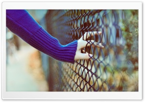 Blue Sweater HD Wide Wallpaper for Widescreen