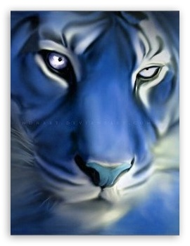 Blue Tiger HD wallpaper for Mobile VGA - VGA QVGA Smartphone ...