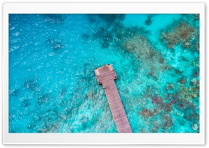 Blue Tropical Water, Island, Dock, Aerial Photography HD Wide Wallpaper for 4K UHD Widescreen desktop & smartphone