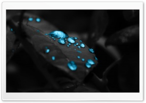 Blue Water Drops HD Wide Wallpaper for Widescreen