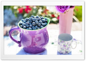 Blueberries HD Wide Wallpaper for Widescreen