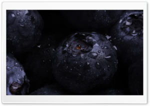 Blueberry Macro HD Wide Wallpaper for Widescreen