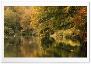 Boathouse at Winkworth Arboretum HD Wide Wallpaper for Widescreen