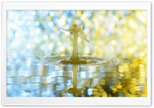 Bokeh Drip HD Wide Wallpaper for Widescreen