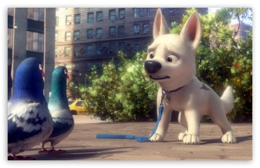 Bolt And Pigeons ❤ 4K UHD Wallpaper for Wide 16:10 5:3 Widescreen WHXGA WQXGA WUXGA WXGA WGA ; 4K UHD 16:9 Ultra High Definition 2160p 1440p 1080p 900p 720p ; Standard 4:3 5:4 3:2 Fullscreen UXGA XGA SVGA QSXGA SXGA DVGA HVGA HQVGA ( Apple PowerBook G4 iPhone 4 3G 3GS iPod Touch ) ; Tablet 1:1 ; iPad 1/2/Mini ; Mobile 4:3 5:3 3:2 16:9 5:4 - UXGA XGA SVGA WGA DVGA HVGA HQVGA ( Apple PowerBook G4 iPhone 4 3G 3GS iPod Touch ) 2160p 1440p 1080p 900p 720p QSXGA SXGA ;