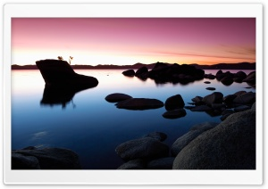 Bonsai Rock Sunset HD Wide Wallpaper for 4K UHD Widescreen desktop & smartphone