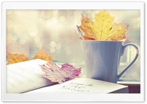 Book And Tea Cup HD Wide Wallpaper for Widescreen