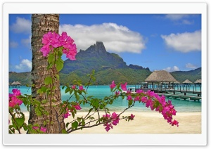 Bora Bora Landscape HD Wide Wallpaper for Widescreen
