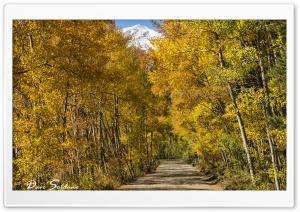 Boreas Pass, Colorado HD Wide Wallpaper for Widescreen