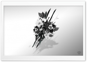 Bouquet HD Wide Wallpaper for Widescreen