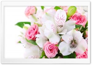 Bouquet Of Flowers HD Wide Wallpaper for Widescreen
