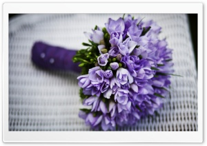 Bouquet Of Purple Flowers HD Wide Wallpaper for Widescreen