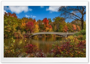 Bow Bridge, Central Park, New York City Ultra HD Wallpaper for 4K UHD Widescreen desktop, tablet & smartphone
