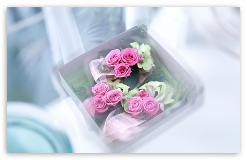Box With Roses ❤ 4K UHD Wallpaper for Wide 16:10 5:3 Widescreen WHXGA WQXGA WUXGA WXGA WGA ; 4K UHD 16:9 Ultra High Definition 2160p 1440p 1080p 900p 720p ; Standard 4:3 5:4 3:2 Fullscreen UXGA XGA SVGA QSXGA SXGA DVGA HVGA HQVGA ( Apple PowerBook G4 iPhone 4 3G 3GS iPod Touch ) ; Tablet 1:1 ; iPad 1/2/Mini ; Mobile 4:3 5:3 3:2 16:9 5:4 - UXGA XGA SVGA WGA DVGA HVGA HQVGA ( Apple PowerBook G4 iPhone 4 3G 3GS iPod Touch ) 2160p 1440p 1080p 900p 720p QSXGA SXGA ;