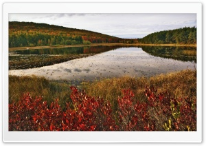 Breakneck Pond, Acadia National Park, Maine HD Wide Wallpaper for Widescreen