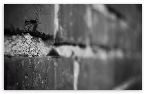 Brick Wall HD wallpaper for Wide 16:10 5:3 Widescreen WHXGA WQXGA WUXGA WXGA WGA ; HD 16:9 High Definition WQHD QWXGA 1080p 900p 720p QHD nHD ; Standard 4:3 5:4 3:2 Fullscreen UXGA XGA SVGA QSXGA SXGA DVGA HVGA HQVGA devices ( Apple PowerBook G4 iPhone 4 3G 3GS iPod Touch ) ; Smartphone 5:3 WGA ; Tablet 1:1 ; iPad 1/2/Mini ; Mobile 4:3 5:3 3:2 16:9 5:4 - UXGA XGA SVGA WGA DVGA HVGA HQVGA devices ( Apple PowerBook G4 iPhone 4 3G 3GS iPod Touch ) WQHD QWXGA 1080p 900p 720p QHD nHD QSXGA SXGA ;