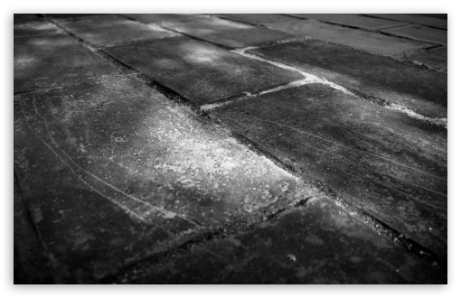 Bricks Wall Black And White HD wallpaper for Wide 16:10 5:3 Widescreen WHXGA WQXGA WUXGA WXGA WGA ; HD 16:9 High Definition WQHD QWXGA 1080p 900p 720p QHD nHD ; Standard 4:3 5:4 3:2 Fullscreen UXGA XGA SVGA QSXGA SXGA DVGA HVGA HQVGA devices ( Apple PowerBook G4 iPhone 4 3G 3GS iPod Touch ) ; Tablet 1:1 ; iPad 1/2/Mini ; Mobile 4:3 5:3 3:2 16:9 5:4 - UXGA XGA SVGA WGA DVGA HVGA HQVGA devices ( Apple PowerBook G4 iPhone 4 3G 3GS iPod Touch ) WQHD QWXGA 1080p 900p 720p QHD nHD QSXGA SXGA ;