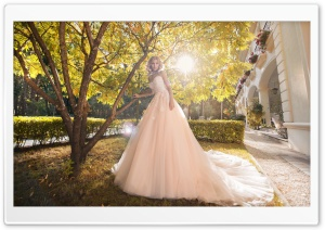 Bride, Wedding, Sunny Autumn Day HD Wide Wallpaper for 4K UHD Widescreen desktop & smartphone