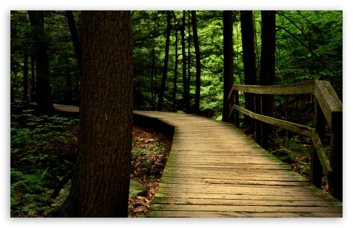 Bridge in the Wood HD wallpaper for Standard 4:3 5:4 Fullscreen UXGA XGA SVGA QSXGA SXGA ; Wide 16:10 5:3 Widescreen WHXGA WQXGA WUXGA WXGA WGA ; HD 16:9 High Definition WQHD QWXGA 1080p 900p 720p QHD nHD ; Other 3:2 DVGA HVGA HQVGA devices ( Apple PowerBook G4 iPhone 4 3G 3GS iPod Touch ) ; Mobile VGA WVGA iPhone iPad PSP Phone - VGA QVGA Smartphone ( PocketPC GPS iPod Zune BlackBerry HTC Samsung LG Nokia Eten Asus ) WVGA WQVGA Smartphone ( HTC Samsung Sony Ericsson LG Vertu MIO ) HVGA Smartphone ( Apple iPhone iPod BlackBerry HTC Samsung Nokia ) Sony PSP Zune HD Zen ; Tablet 2 Android 3 DVGA HVGA HQVGA devices ( Apple PowerBook G4 iPhone 4 3G 3GS iPod Touch ) ; Dual 4:3 5:4 16:10 5:3 16:9 UXGA XGA SVGA QSXGA SXGA WHXGA WQXGA WUXGA WXGA WGA WQHD QWXGA 1080p 900p 720p QHD nHD ;