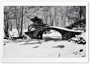 Bridge Winter Black and White HD Wide Wallpaper for Widescreen