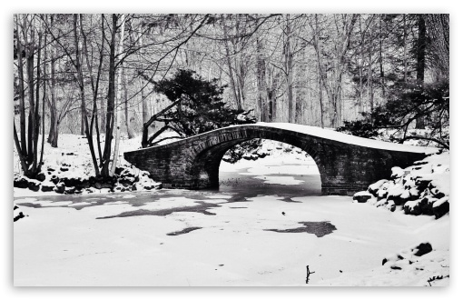 Bridge Winter Black and White ❤ 4K UHD Wallpaper for Wide 16:10 5:3 Widescreen WHXGA WQXGA WUXGA WXGA WGA ; 4K UHD 16:9 Ultra High Definition 2160p 1440p 1080p 900p 720p ; Standard 4:3 5:4 3:2 Fullscreen UXGA XGA SVGA QSXGA SXGA DVGA HVGA HQVGA ( Apple PowerBook G4 iPhone 4 3G 3GS iPod Touch ) ; Tablet 1:1 ; iPad 1/2/Mini ; Mobile 4:3 5:3 3:2 16:9 5:4 - UXGA XGA SVGA WGA DVGA HVGA HQVGA ( Apple PowerBook G4 iPhone 4 3G 3GS iPod Touch ) 2160p 1440p 1080p 900p 720p QSXGA SXGA ;