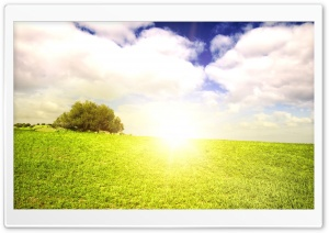 Bright Sunlight HD Wide Wallpaper for Widescreen