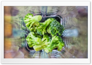 Broccoli HD Wide Wallpaper for Widescreen