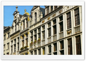 Brussels Old Buildings HD Wide Wallpaper for Widescreen