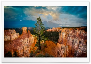 Bryce Canyon HD Wide Wallpaper for 4K UHD Widescreen desktop & smartphone