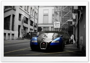 Bugatti Veyron City HD Wide Wallpaper for Widescreen