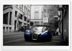 Bugatti Veyron City HD Wide Wallpaper for Widescreen