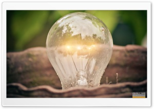 Bulb HD Wide Wallpaper for Widescreen